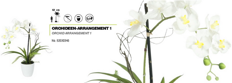 Bílá orchidej s květináčem - 8 květů, 62 cm