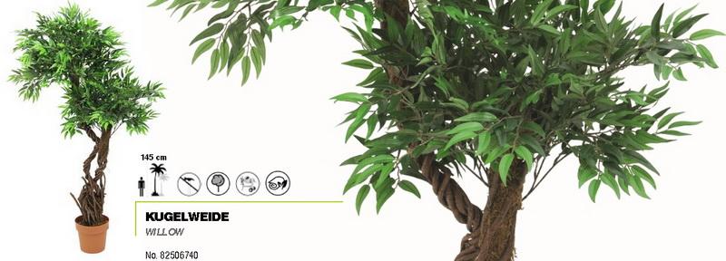 Vrba - přírodní kmeny, 145 cm