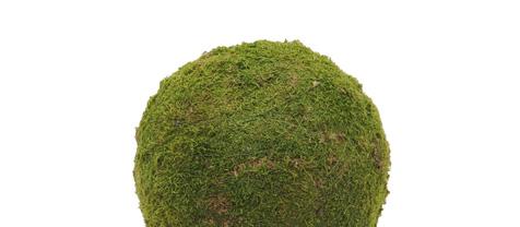 Mechová koule, zelená