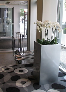 květináče v interiéru