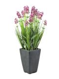 Lavendule v květináči růžová, 45cm