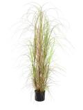 Keř trávy v květináči, 150cm
