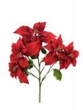 Vánoční hvězda větvička - červená, 60cm