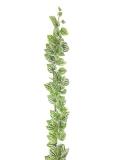 Girlanda Réva se zeleno-bílými lístky, 180 cm