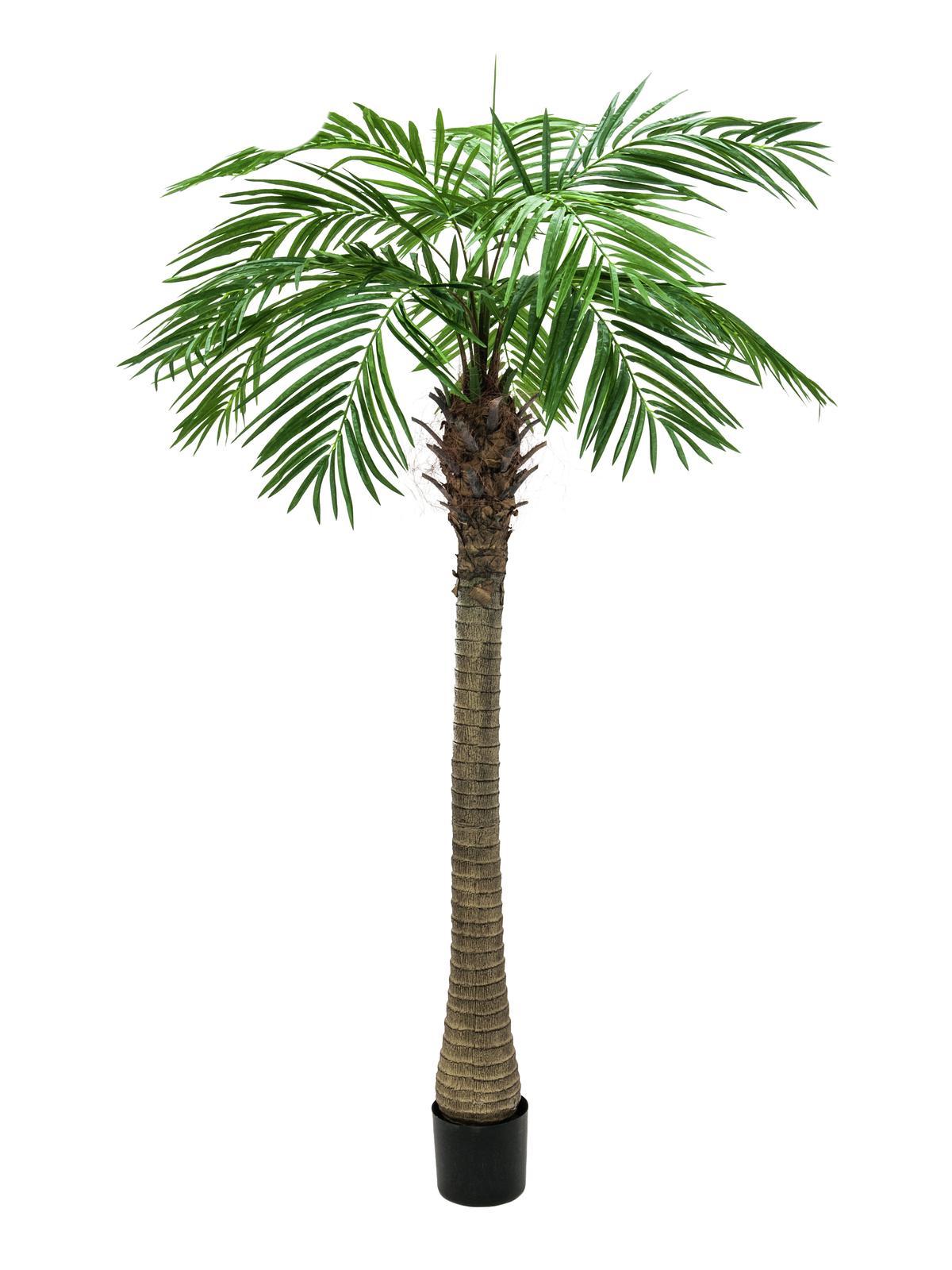 Umělá palma Phoenix, 210cm