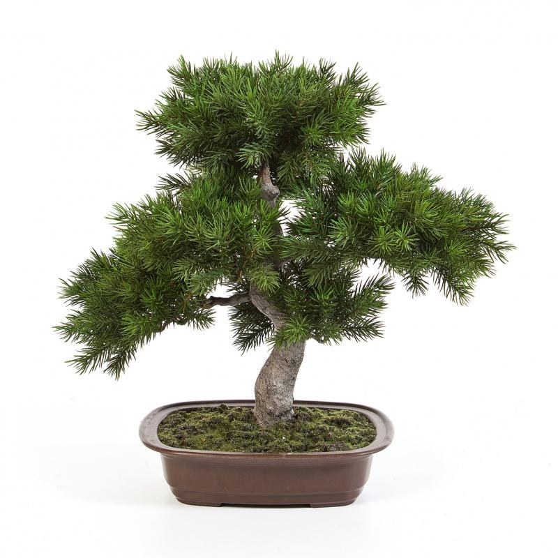 umělá bonsai borovice pínie v květináči deluxe 48cm
