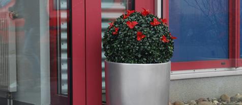 vstupní dekorace rostlinami