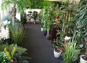 vzorkovna umělých rostlin - STUDIOGREEN